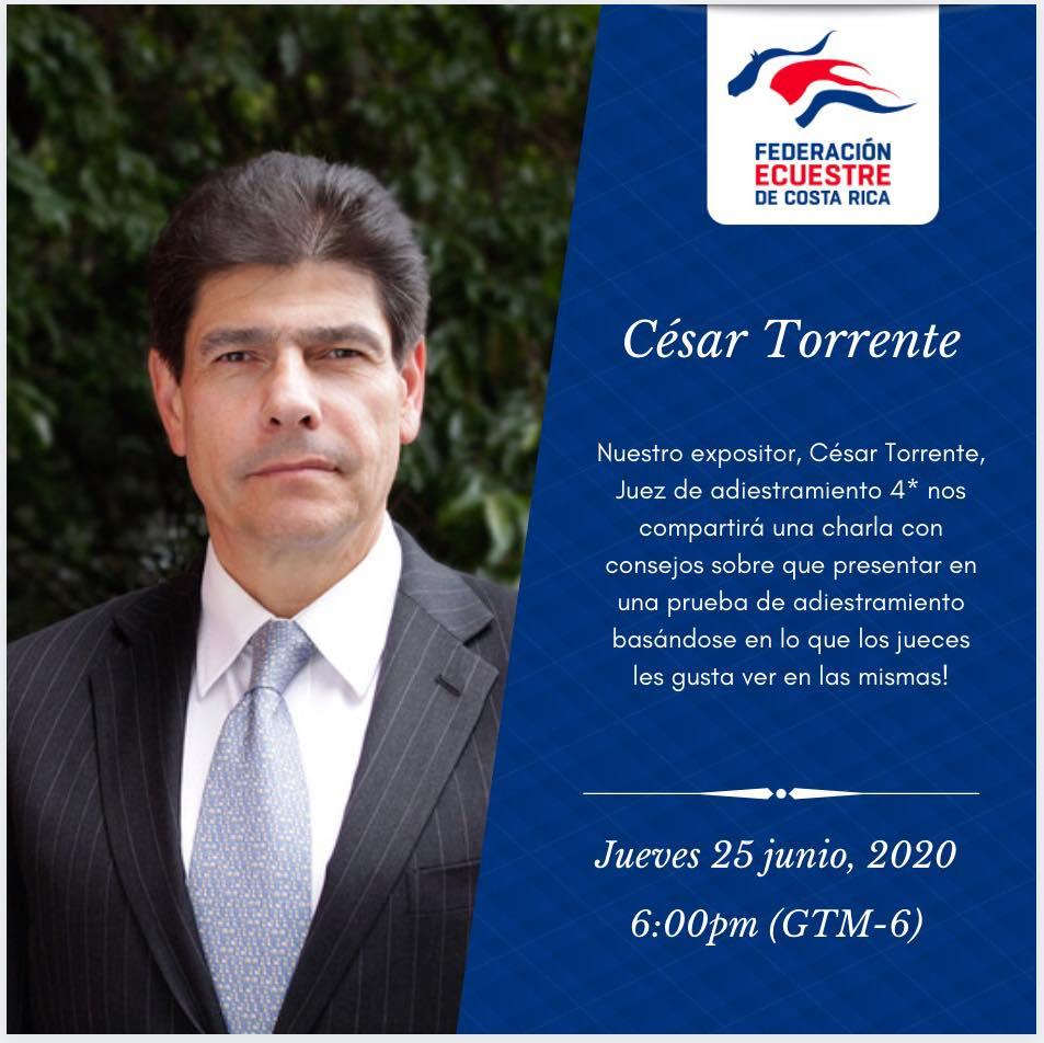 Lo que los jueces quieren ver y lo que no quieren ver en una prueba de adiestramiento - César Torrente (Col)