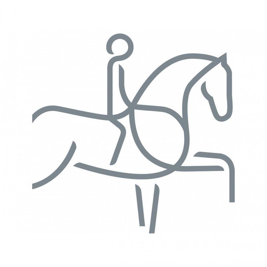 Convocatoria Concurso Adiestramiento organiza ANDEDE