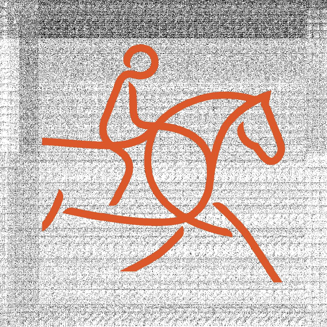 Convocatoria FEI - Concurso Internacional Endurance